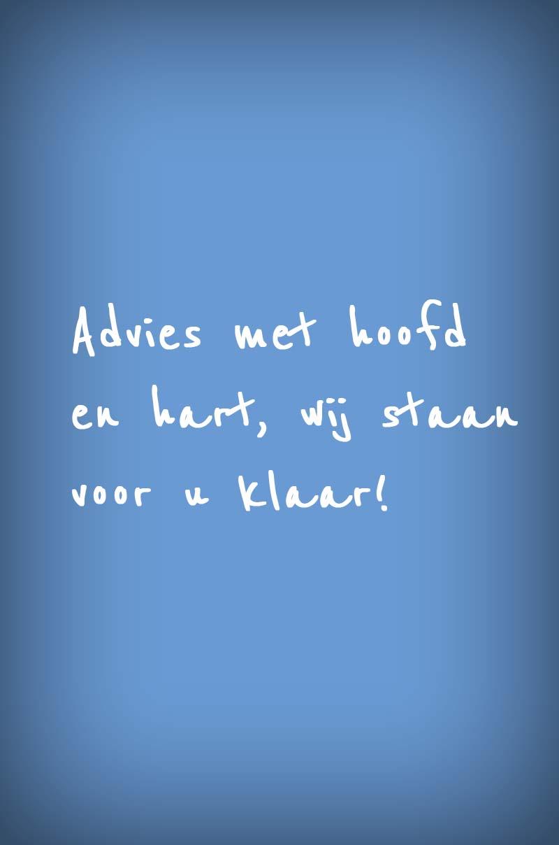 Advies met hoofd en hart